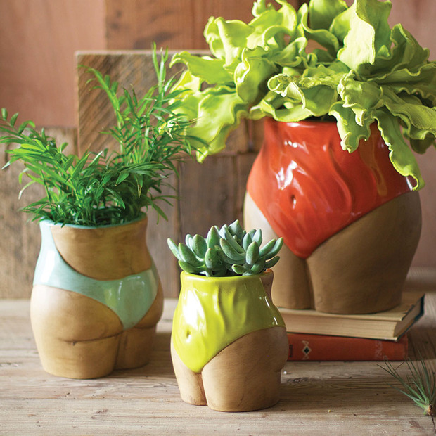 House Plants: Functional and Beautiful Planters