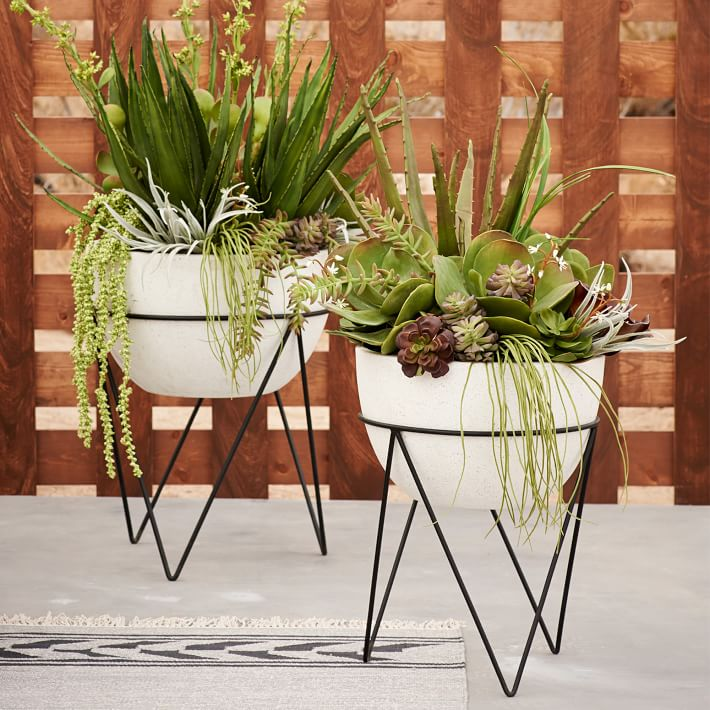 House Plants Functional And Pretty Planters Sandra Best